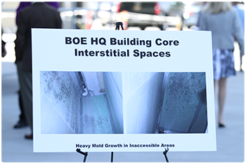 Heavy mold growth in inacessible areas